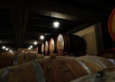 Taste-Scenario_viaggi-Abruzzo_vino-winery-OK