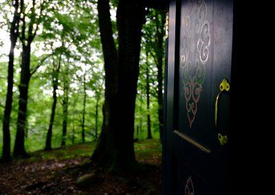 tour-skania-copenhagen_01-forest_Taste-scenario_ok