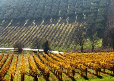 Abruzzo, regione nascosta