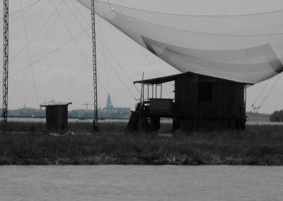Barena_9_Venezia_ph tatstescenario