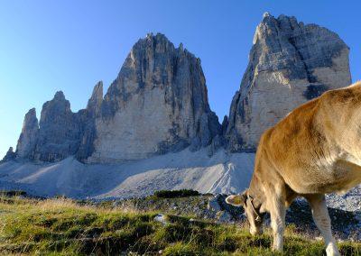 Taste-Scenario_viaggi-Alto-Adige_tre-cime-di-lavaredo