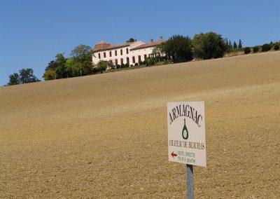 Taste-Scenario_viaggi-Armagnac_chateau-seminativo