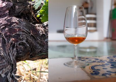Taste-Scenario-Eolie Eolians-island-viaggi_travel-05-malvasia ok