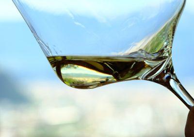 Taste-Scenario-Vini-Wines-d-bicchiere-di-vino-glass-of-wine